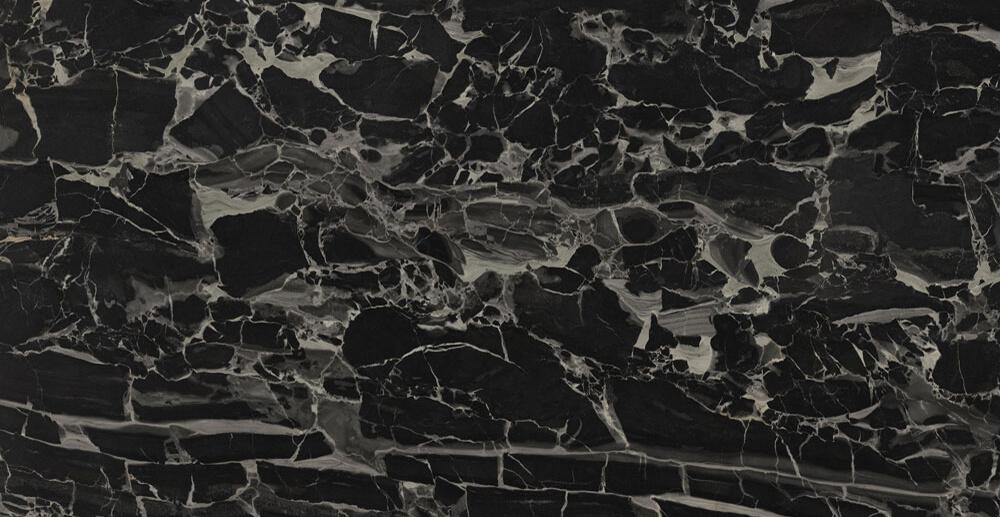 PANTHER BLACK 60X120